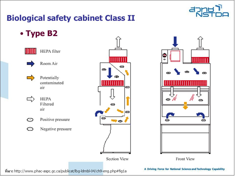 Biological safety cabinet Class II