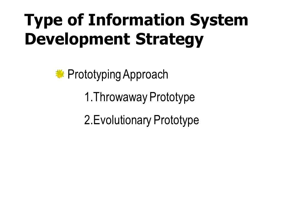 Type of Information System Development Strategy
