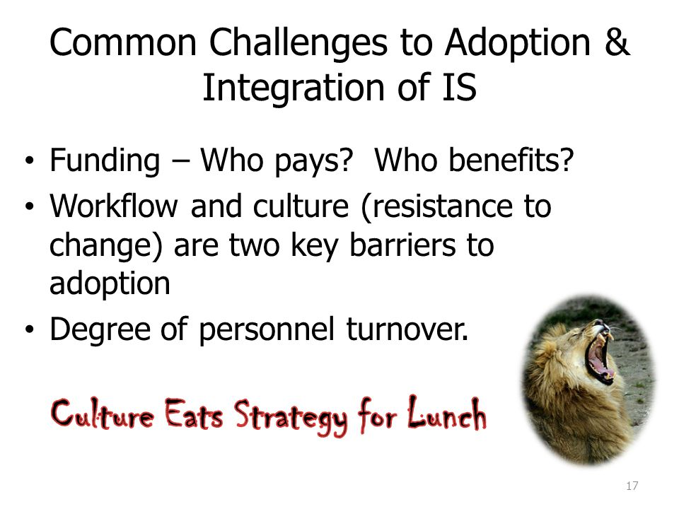 Common Challenges to Adoption & Integration of IS