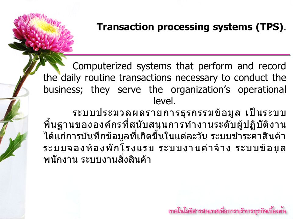 Transaction processing systems (TPS).