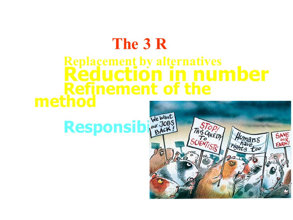 The 3 R Responsibility Replacement by alternatives