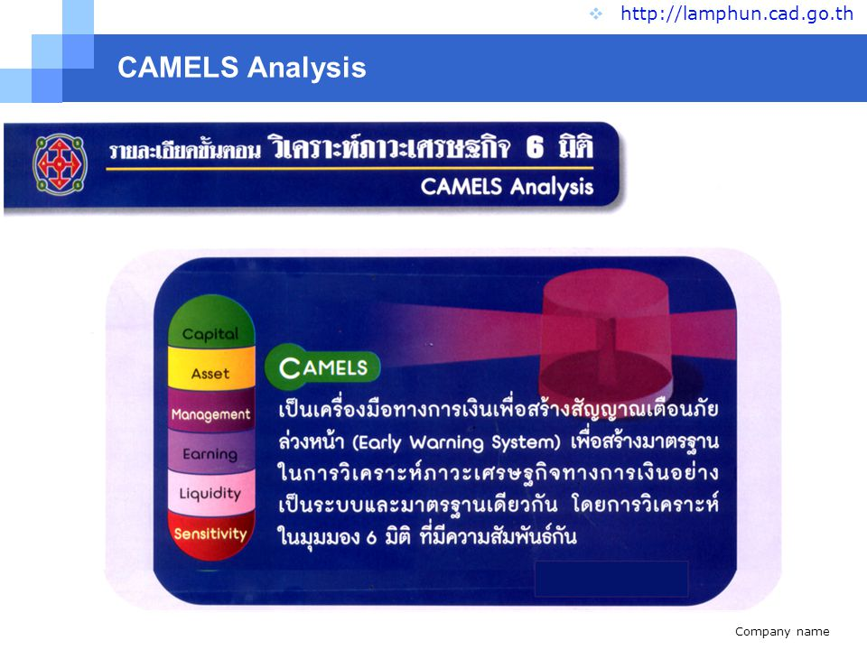 CAMELS Analysis http://lamphun.cad.go.th www.themegallery.com