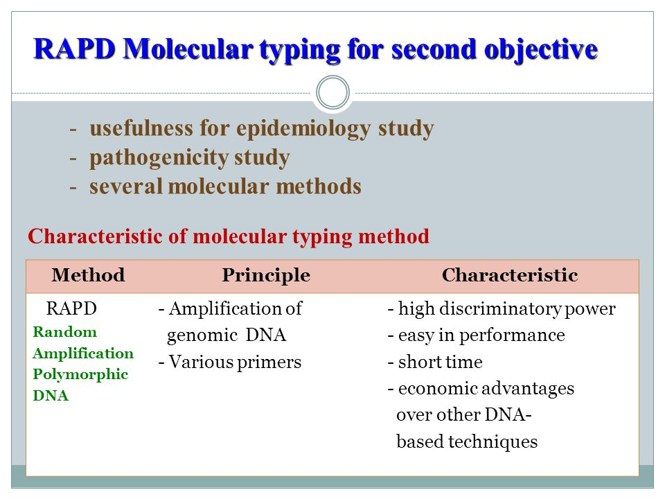RAPD Molecular typing for second objective