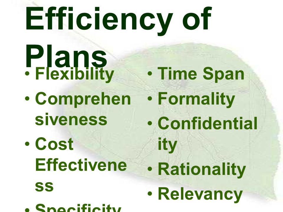 Efficiency of Plans Flexibility Comprehensiveness Cost Effectiveness