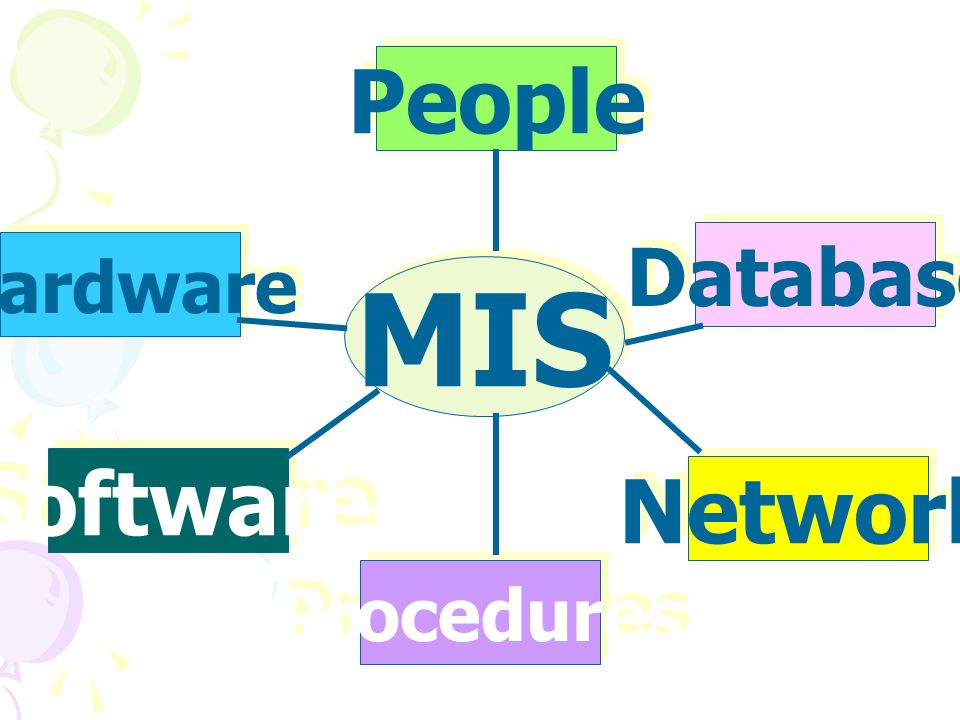 People Database Hardware MIS Software Network Procedures
