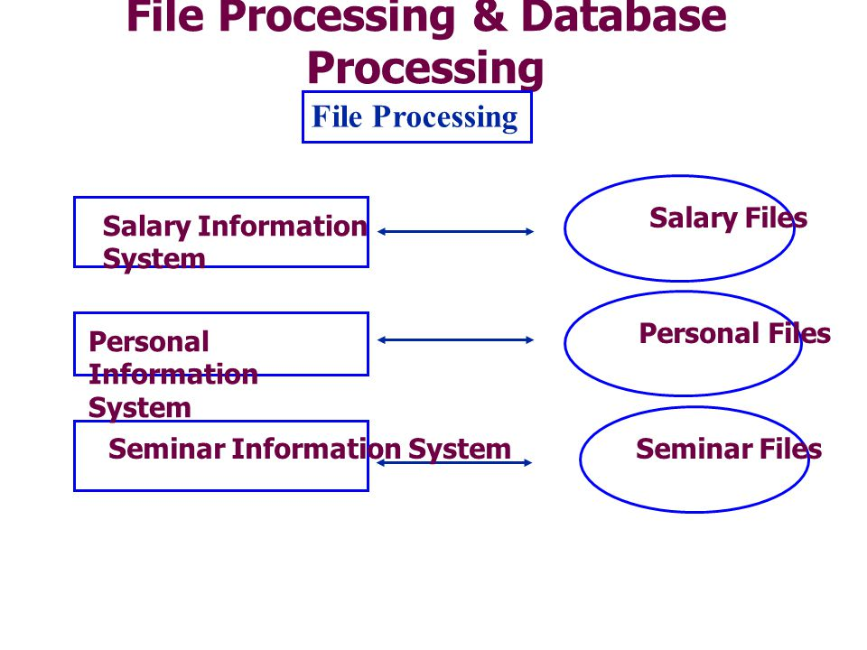File Processing & Database Processing