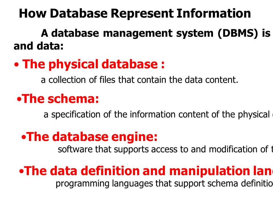 How Database Represent Information