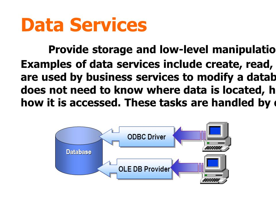 Provide storage and low-level manipulation of data in a database.