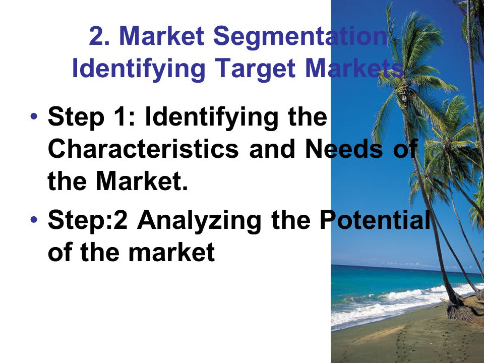 2. Market Segmentation Identifying Target Markets