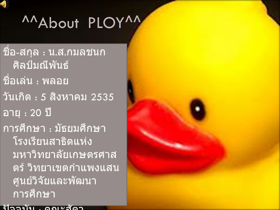 ^^About PLOY^^