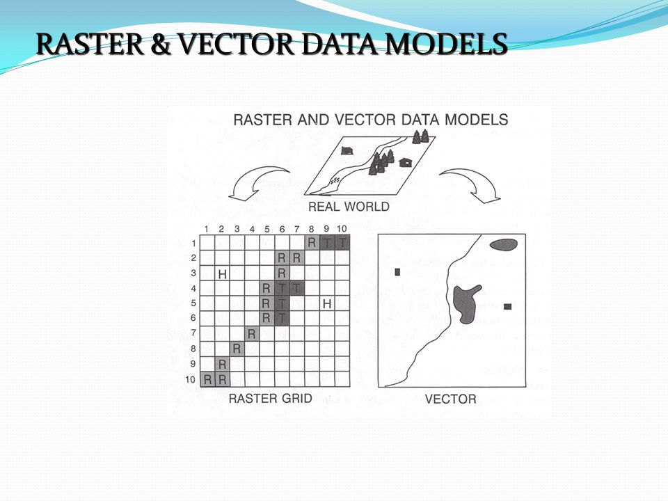 RASTER & VECTOR DATA MODELS