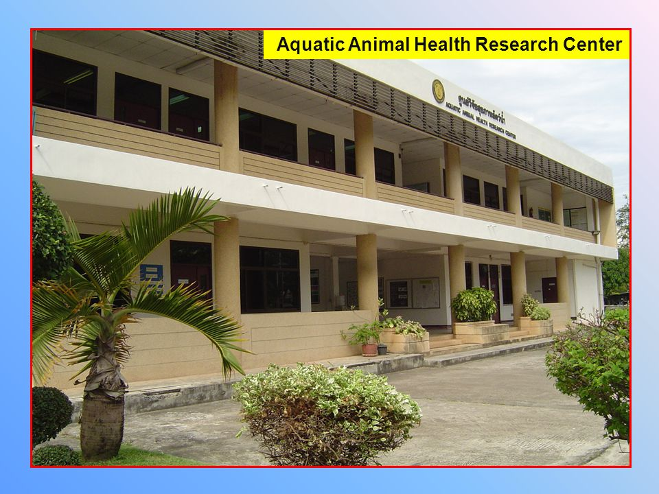 Aquatic Animal Health Research Center