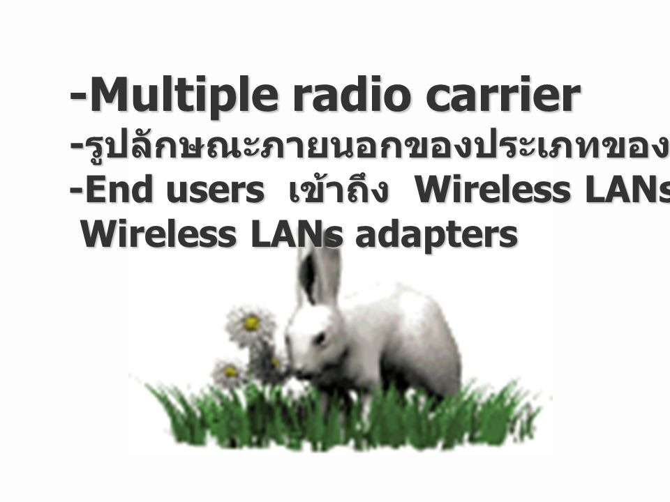 -Multiple radio carrier