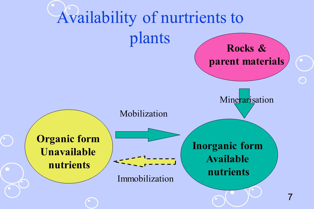 Availability of nurtrients to plants