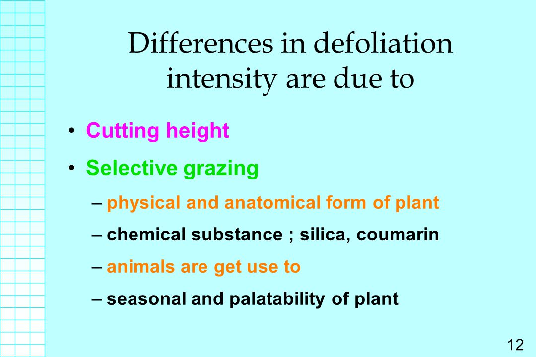 Differences in defoliation intensity are due to