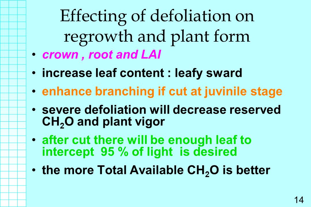 Effecting of defoliation on regrowth and plant form