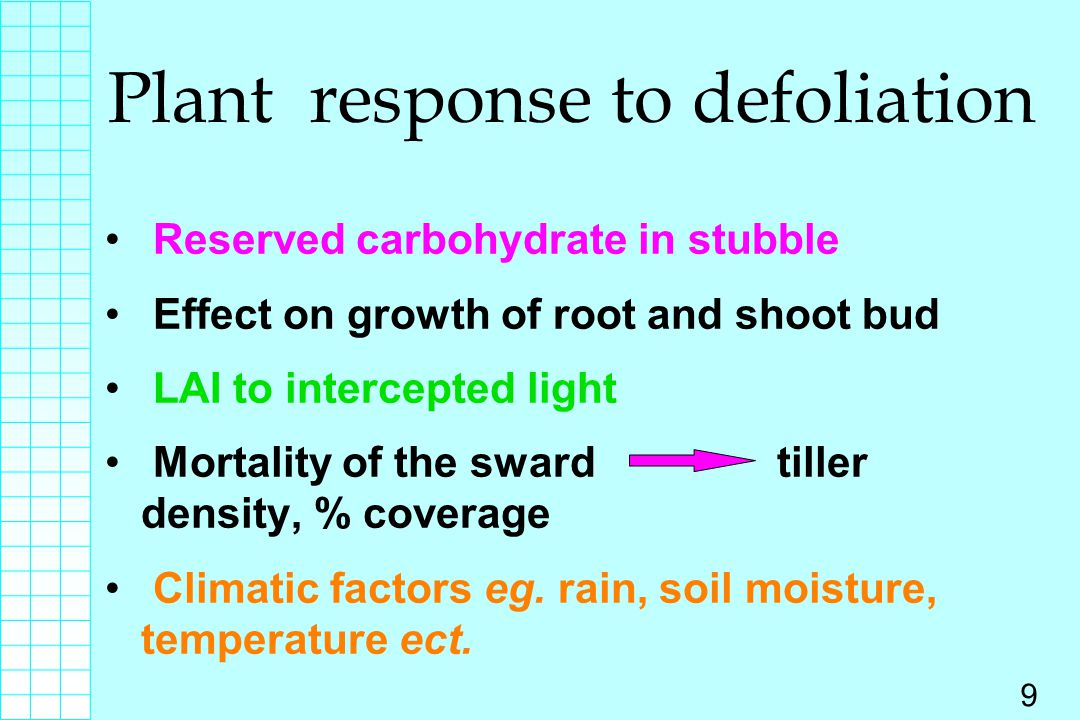 Plant response to defoliation