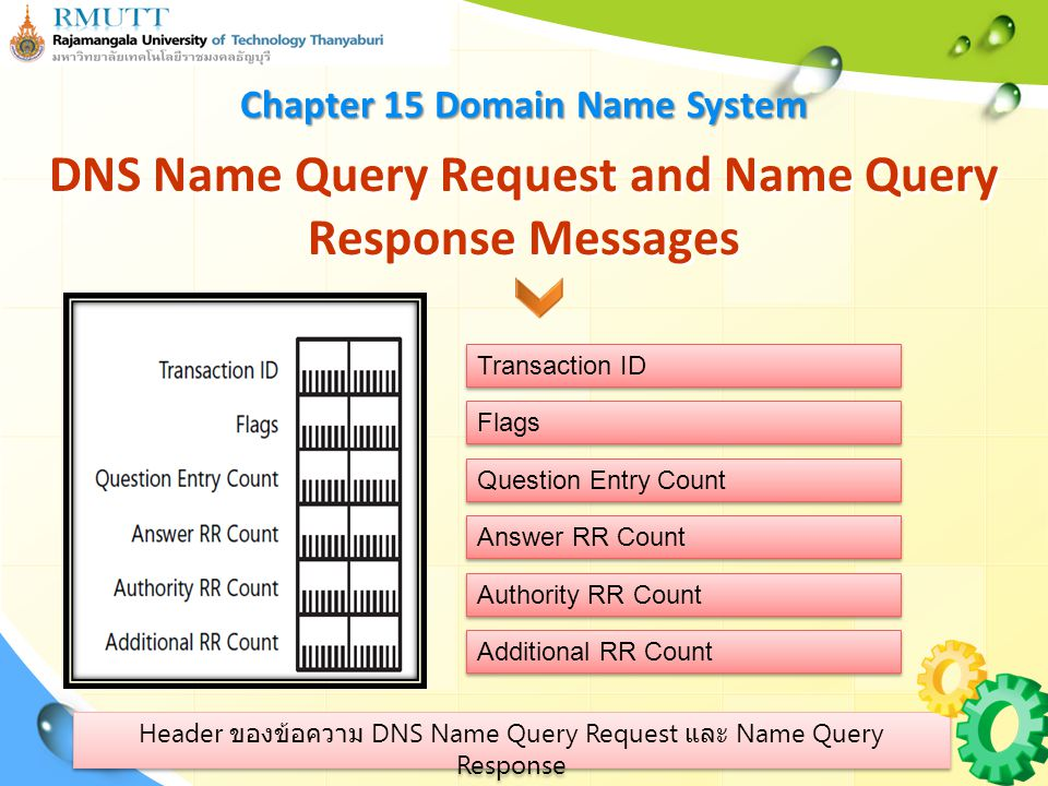DNS Name Query Request and Name Query Response Messages