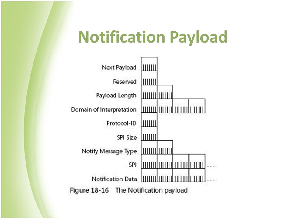 Notification Payload