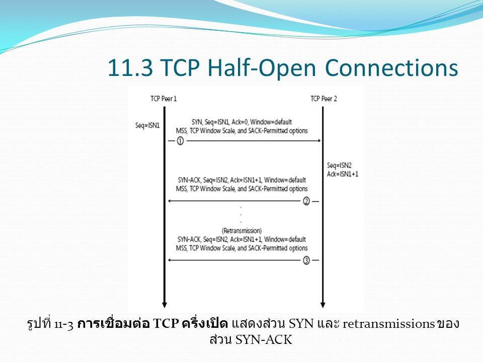 11.3 TCP Half-Open Connections