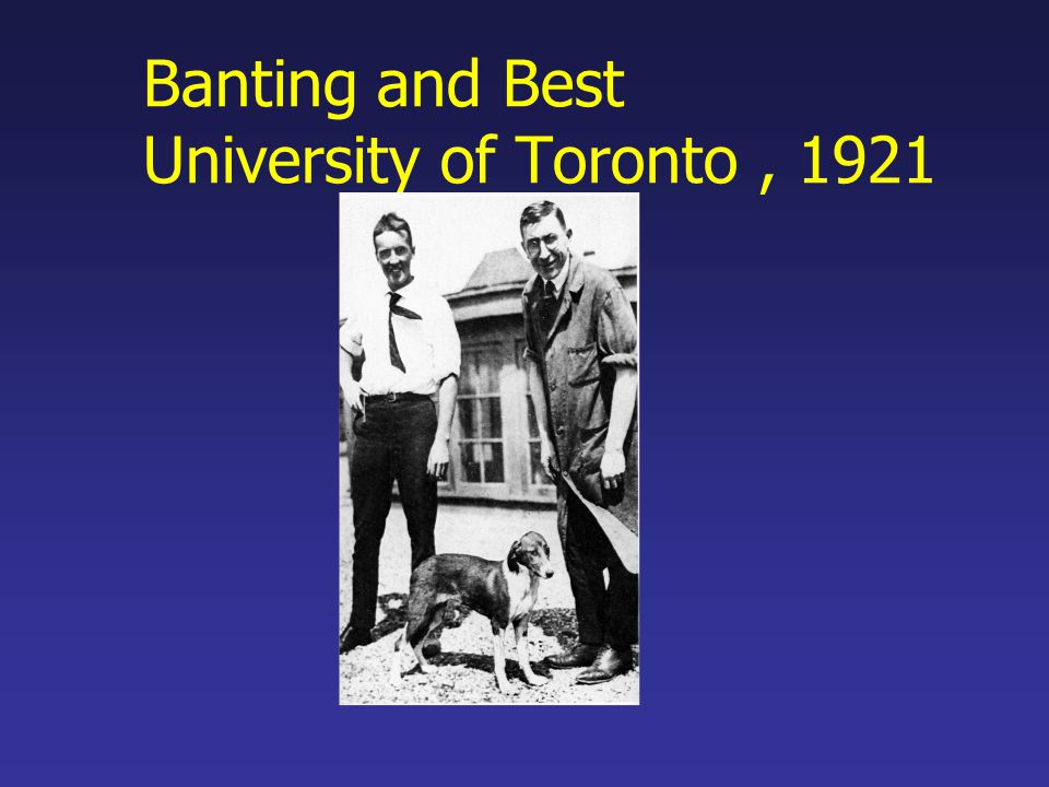 Banting and Best University of Toronto , 1921