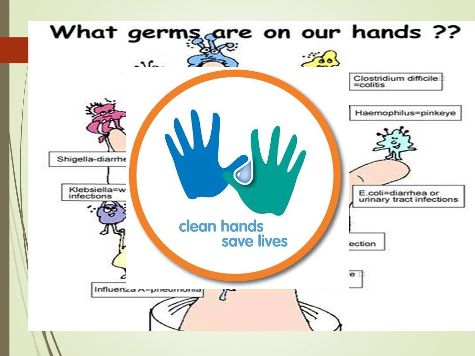 What germs are on your hands