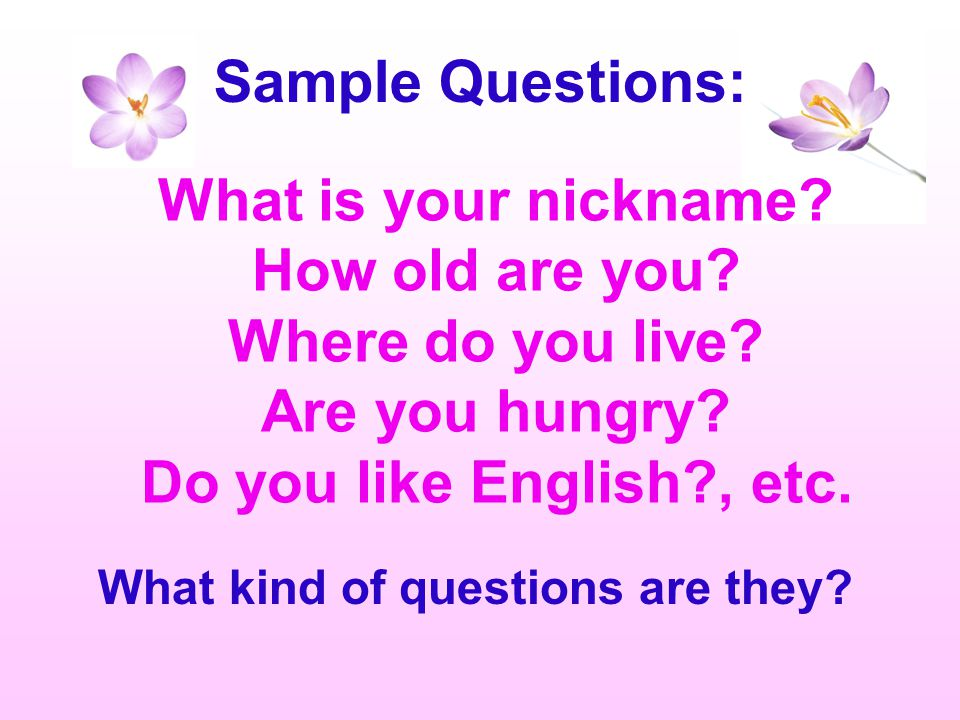 Sample Questions: What is your nickname How old are you