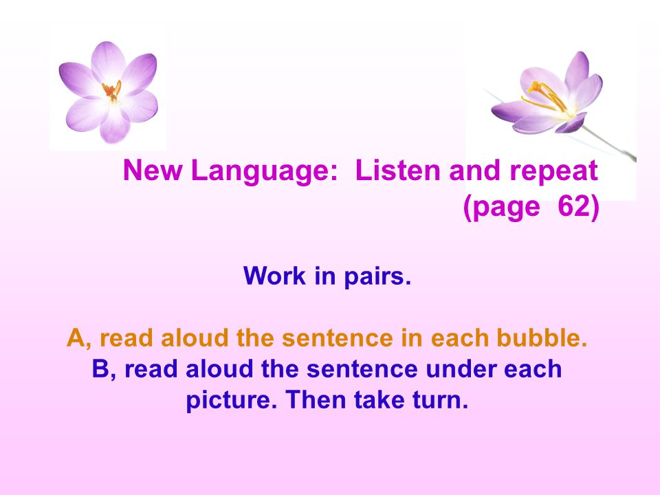 New Language: Listen and repeat (page 62)