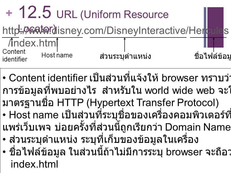 12.5 URL (Uniform Resource Locator)