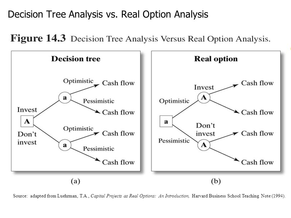 Decision Tree Analysis vs. Real Option Analysis
