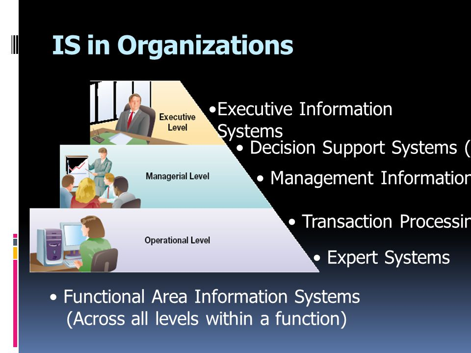 IS in Organizations Executive Information Systems