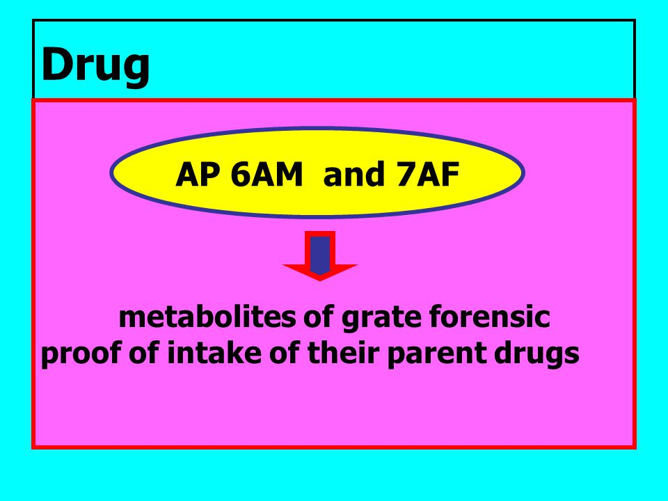metabolites of grate forensic