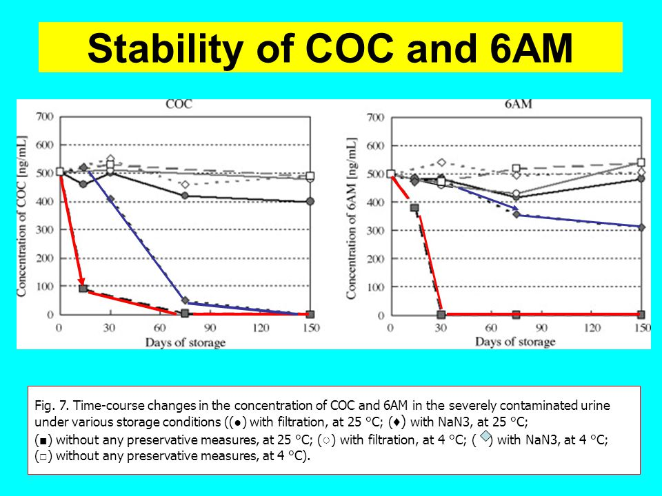 Stability of COC and 6AM Fig. 7. Time-course changes in the concentration of COC and 6AM in the severely contaminated urine.