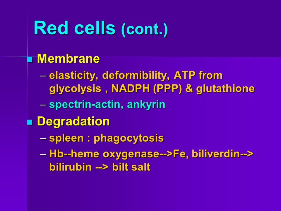 Red cells (cont.) Membrane Degradation
