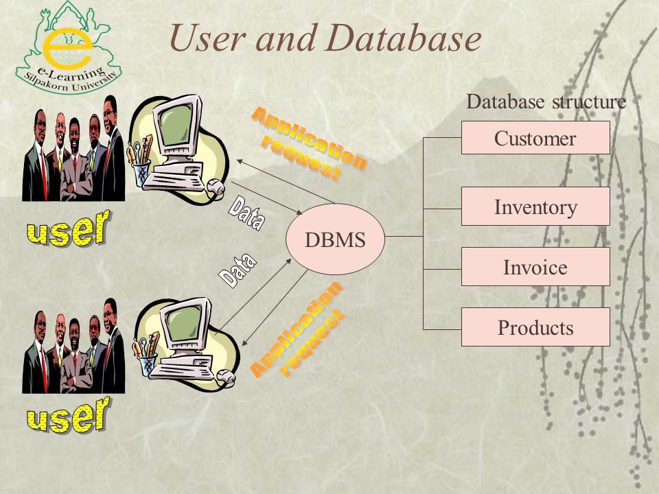 User and Database Database structure Customer Inventory DBMS Invoice