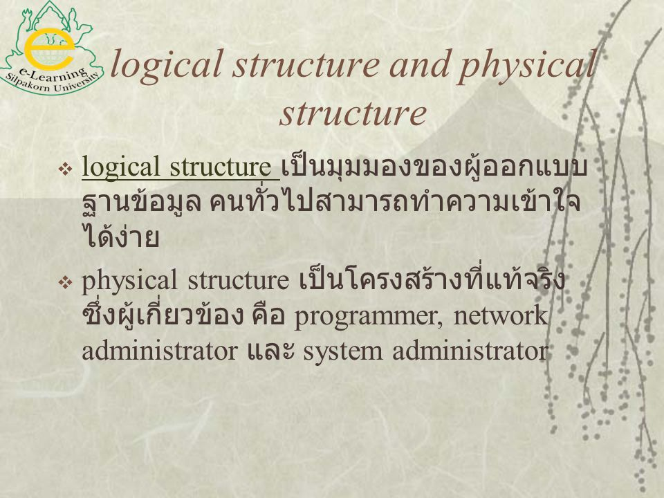 logical structure and physical structure