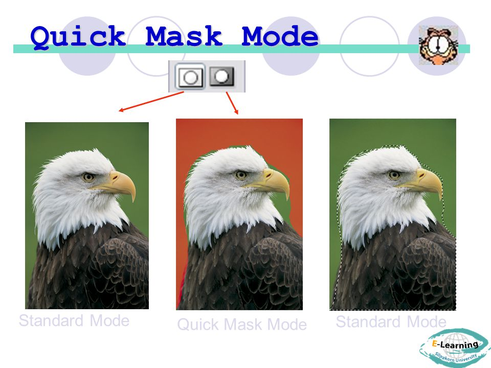 Quick Mask Mode Standard Mode Quick Mask Mode Standard Mode
