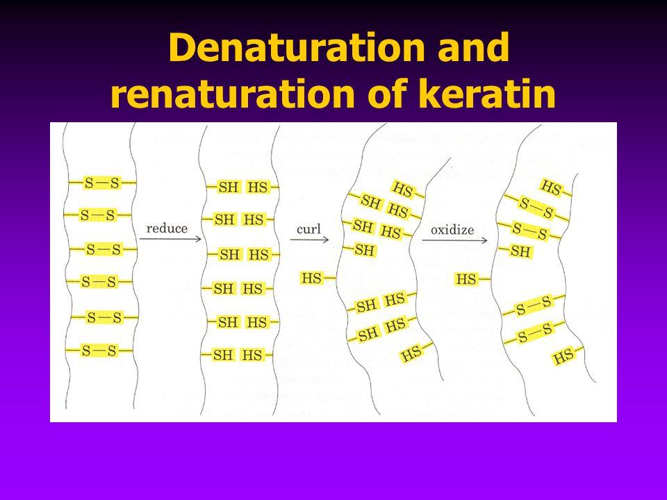 Denaturation and renaturation of keratin