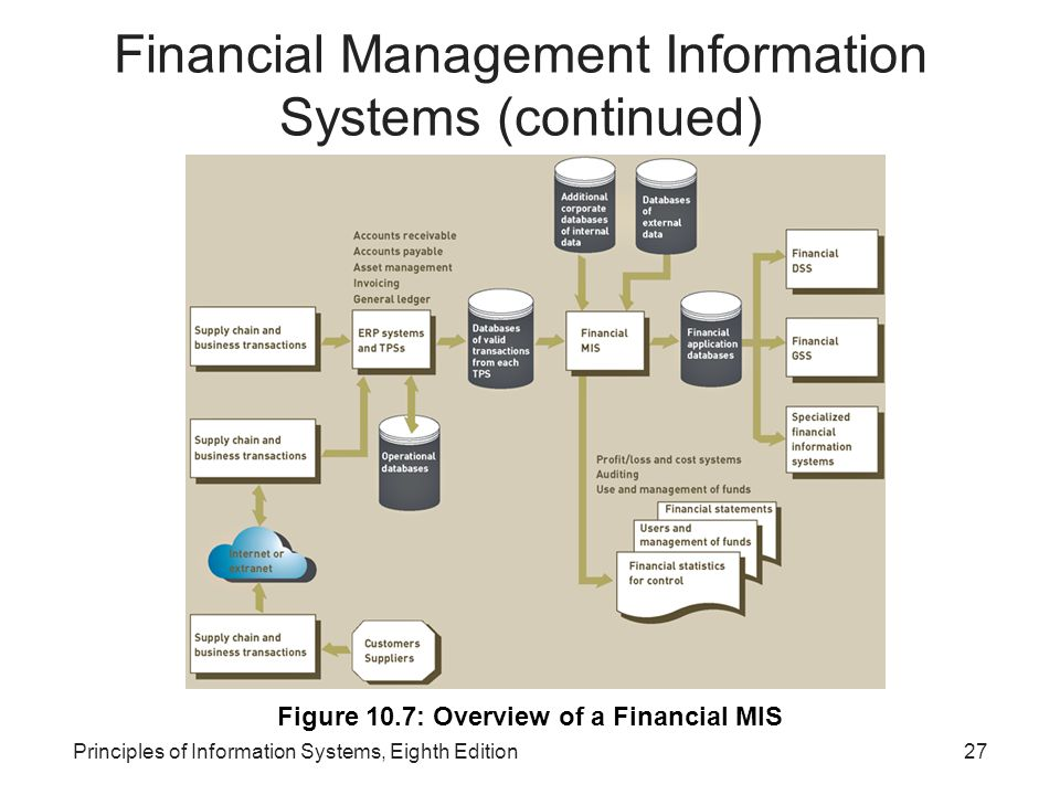 Financial Management Information Systems (continued)