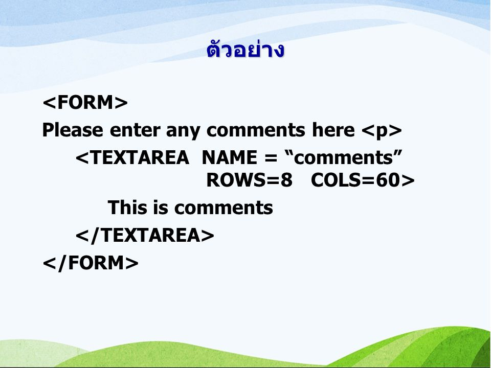 ตัวอย่าง <FORM> Please enter any comments here <p>
