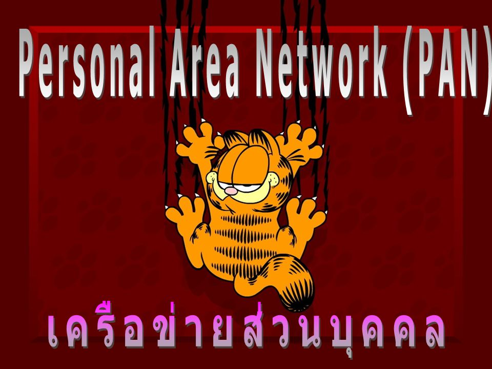 Personal Area Network (PAN)