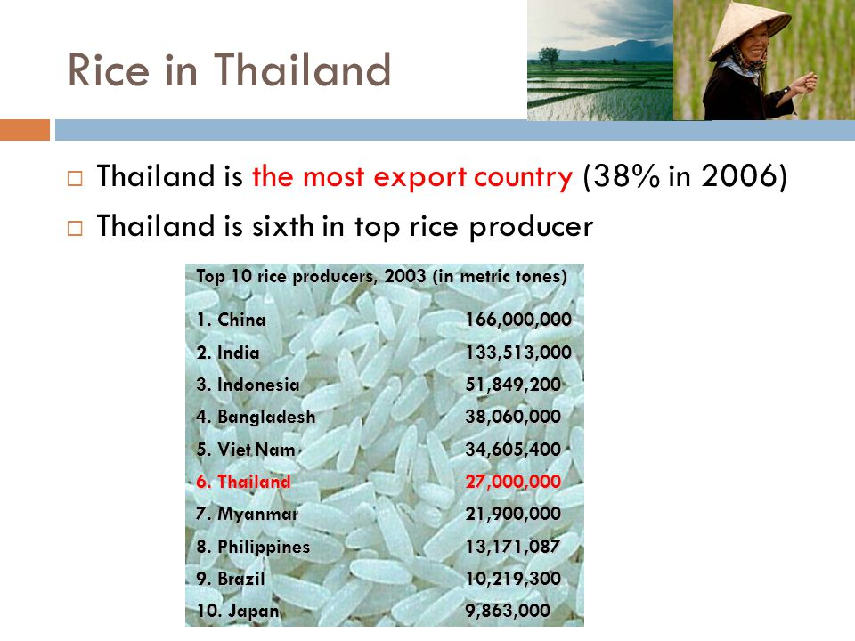 Rice in Thailand Thailand is the most export country (38% in 2006)