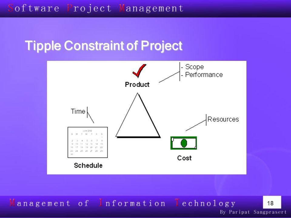 Tipple Constraint of Project