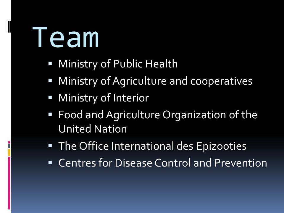 Team Ministry of Public Health