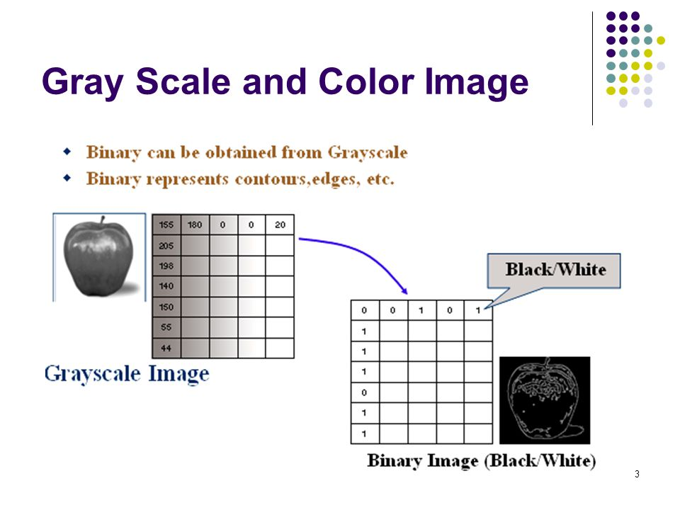 Gray Scale and Color Image