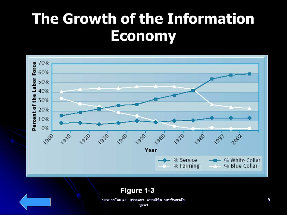 The Growth of the Information Economy