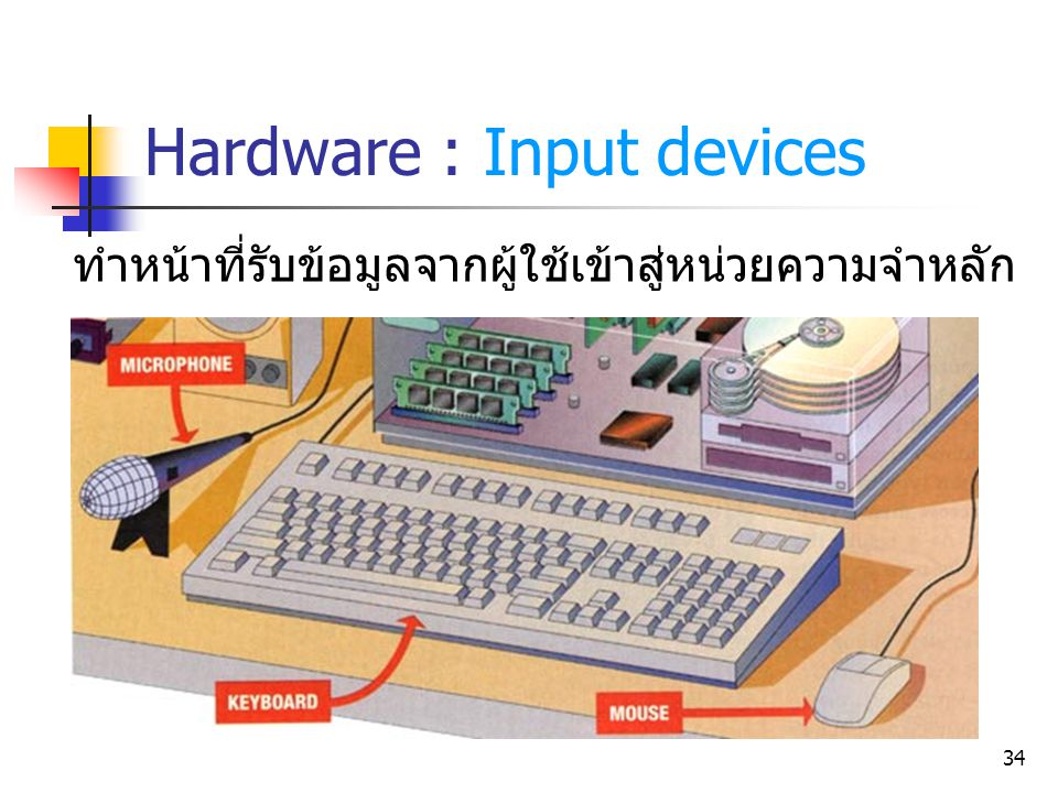 Hardware : Input devices