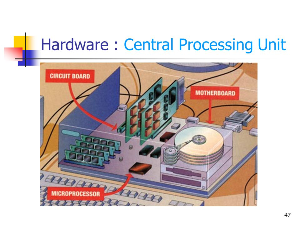 Hardware : Central Processing Unit