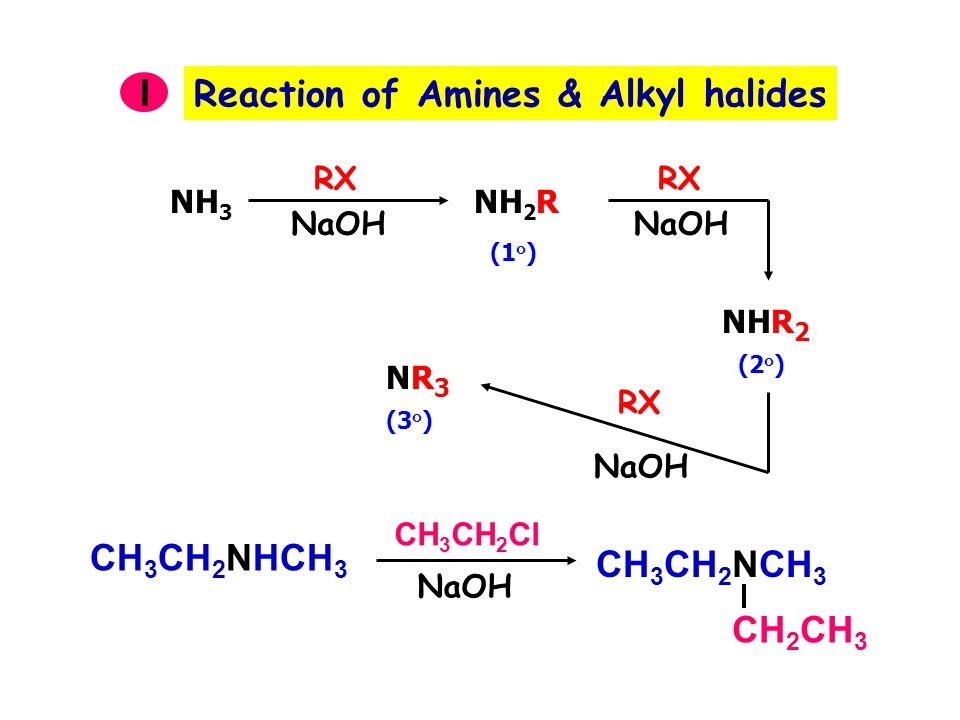 Reaction of Amines & Alkyl halides I