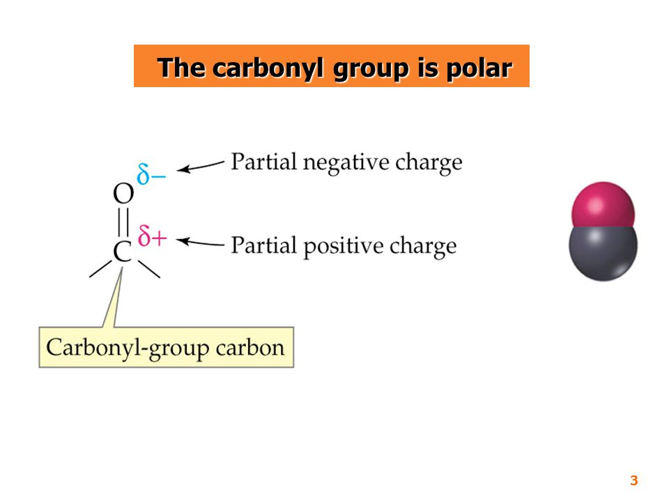 The carbonyl group is polar